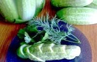 Як приготувати домашні малосольні огірки - рецепт