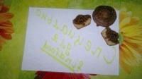 Як приготувати смугасті кекси в кексопечке - рецепт